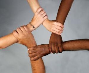 113015_Diversity