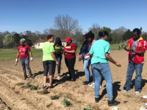 HBCUs Address Food Insecurity through Community Collaboration